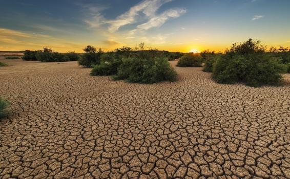 Tierra seca por los efectos del sol