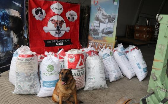 534 kg de material reciclado son transportados por la Fuerza Aérea Colombiana en el Amazonas