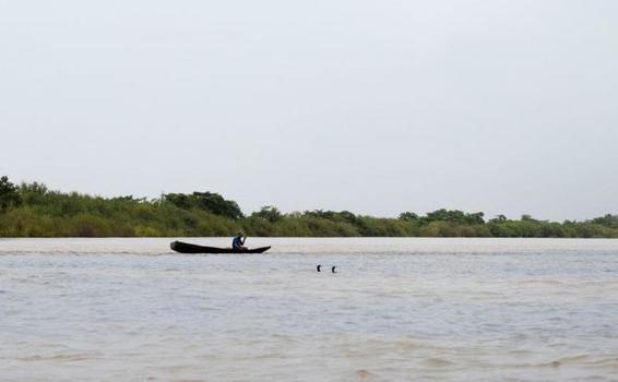 Vichada, un tesoro biodiverso al alcance del turismo