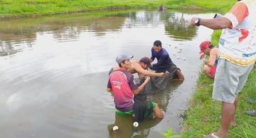 image for Prefeitura impulsiona a piscicultura