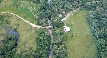 image for Colombia recibe 28 millones de dólares para proteger los bosques