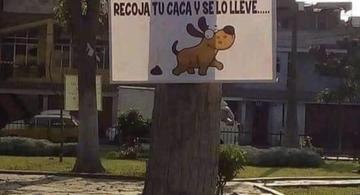 image for Letrero con emotivo mensaje sorprende a vecinos de Chiclayo