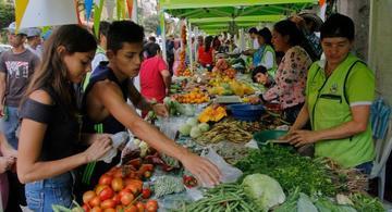 image for Reforma fiscal no gravará los alimentos básicos