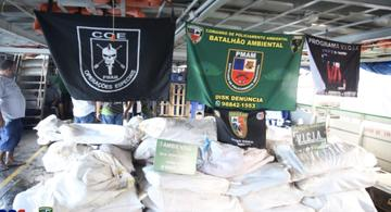 image for Apreendem cinco toneladas de pescado ilegal no rio Solimões