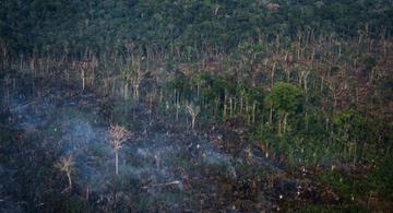 image for Amazonia brasileña el mayor número de incendios desde 2007