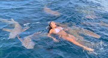 image for Natacha Horana parece nadando com tubarões