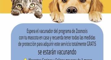 image for Programa de Zoonosis estará hoy vacunando