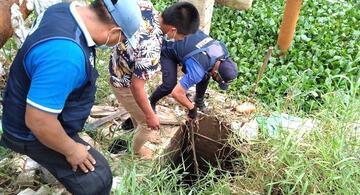 image for Salvan la vida de perrito que cayó a pozo de 5 metros de profundidad