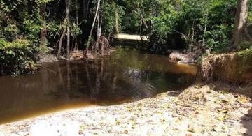 image for Indígenas de Leticia denuncian mortandad en lago Takana
