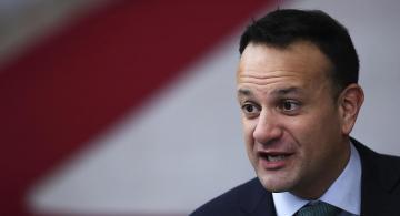 image for Próximo 8 de febrero Irlanda celebrará elecciones generales