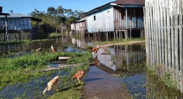 image for Tarapacá / Poco a poco el río entra al pueblo