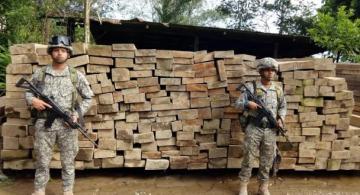 Personas al lado de un arrume de listones de madera incautda
