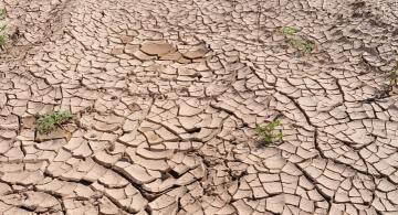 Suelo totalmente seco por el sol