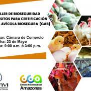 image for Taller de Bioseguridad
