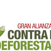 gacdeforestacion's picture