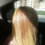 arcoirisdefuego's picture