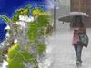 image for Pronóstican fuertes precipitaciones en la primera temporada de lluvias | IDEAM