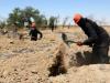 image for Ejército sirio ha hallado una fosa común con 70 cadáveres