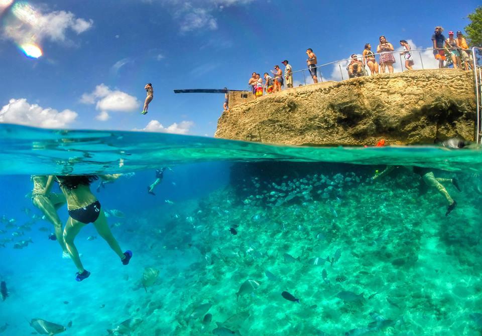 Personas sumergida en el mar