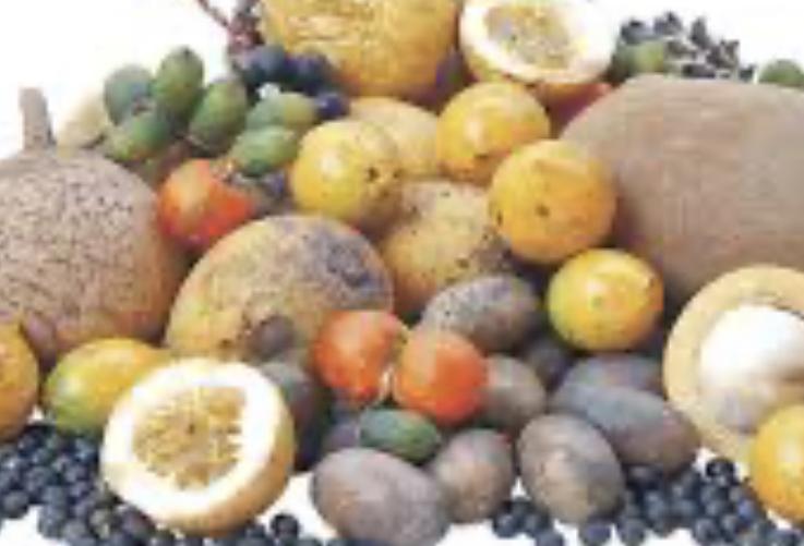image for Pulpas de frutas Asai Lara